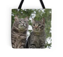 One Day Beaker, all this will be yours. Tote Bag