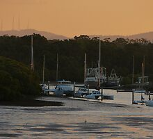 Cabbage Tree Ck by PhotosByG