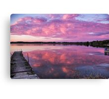 Burst of pink Canvas Print