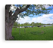 Country style Canvas Print