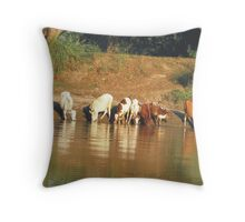 Water Time Throw Pillow