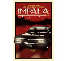NOW BOARDING: Impala Photographic Print