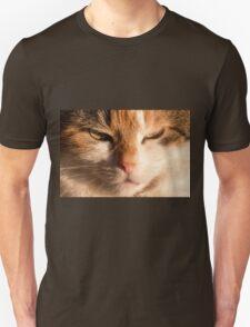 Content Cat Face T-Shirt