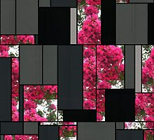 Crape Myrtle Art Rectangles 7 by Christopher Johnson
