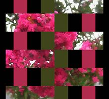 Crape Myrtle Art Rectangles 15 by Christopher Johnson