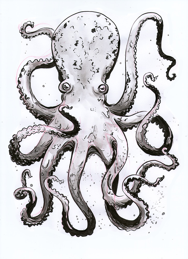 Inky Octopus by Seahorse Carousel