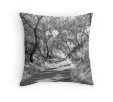 Mystery Trail #02 Throw Pillow