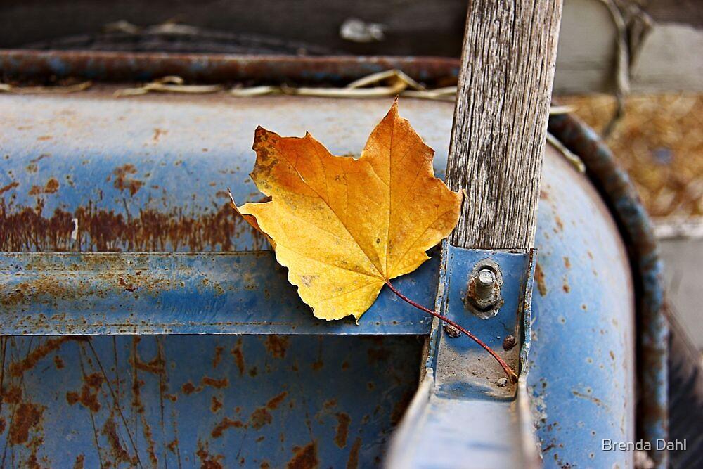 Rustic  by Brenda Dahl
