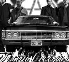 Supernatural Team Free Will Sticker