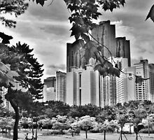 Black and White Busan Skyline by Fike2308