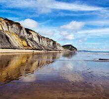 Charmouth Beach 2 by Susie Peek