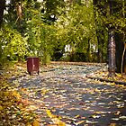 Autumn alley_01 by wildrain