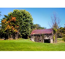 BARN WITH VINES Photographic Print