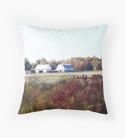 ANOTHER OLD BARN Throw Pillow