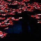 still waters run... by Nikolay Semyonov