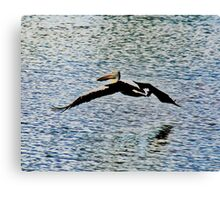 Pelican Flying Over Water Canvas Print