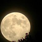Jet Moon by dge357