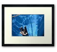 Water reflections on blue fishing boats in Fremantle harbour Framed Print
