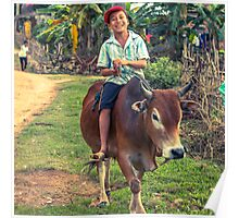 The Happy Cow Boy, Phong Nha, Vietnam, 2013 Poster