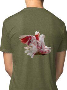 Colourful Pigeons Tri-blend T-Shirt