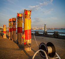 Bollards ~ Surf Life Savers, Eastern Beach by Julie Begg