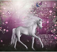 pink unicorn in a roses garden Photographic Print