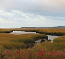 Fall on the Marsh by debraroffo