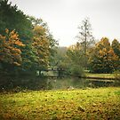A little bridge - Bijlmerweide by steppeland