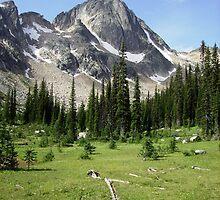 Dunn Peaks, BC by Lynda Earley