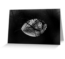 Reflection in black water Greeting Card
