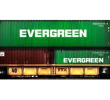 Evergreen State Photographic Print