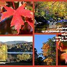 Autumn is a Second Spring by Paula Tohline  Calhoun
