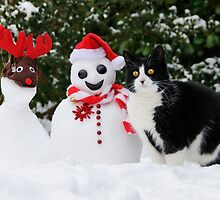 Cat by the side of Santa snowman by Katho Menden