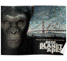 Mosaic: Rise of the Planet of the Apes Poster