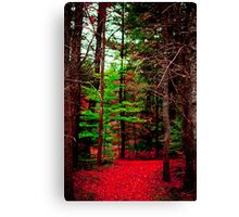 Maine Woods on Fire Canvas Print