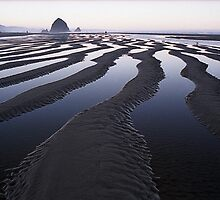 Canals in the Sand at Canon Beach, Oregon by Vern Treat