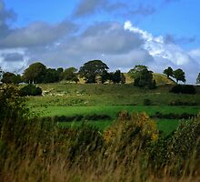 Old Sarum by Tobias King