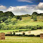 Hay-henge by Tobias King