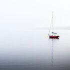 A Still Morning on the Huon River, Tasmania by Jim Lovell