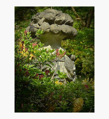 Stonework - Bodnant Gardens, Wales Photographic Print