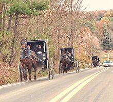 Amish Traffic Jam by vigor