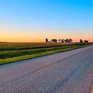 Wide Open - Rural Georgia Landscape by Mark Tisdale