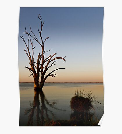 Lake Bonney Poster