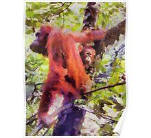Orangutan and Child Poster