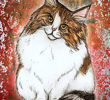 Natasha the Norwegian Forest Cat by Studio8107