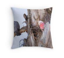 Nesting Gallahs Throw Pillow