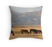 High Desert Throw Pillow