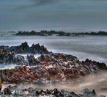 Missty Nelson Bay  by Kip Nunn