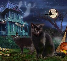 Halloween Cats by aura2000