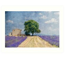 belle journee Art Print